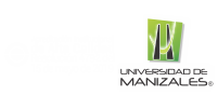 Ingeniería en Analítica de Datos – Universidad de Manizales