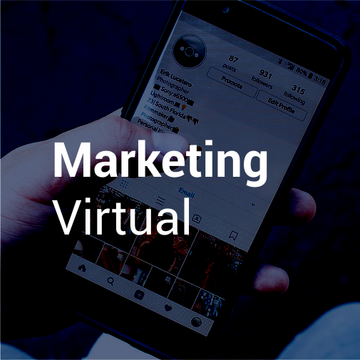 Diplomado en Marketing Virtual