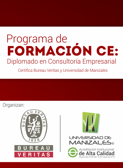 Programa de formación CE Diplomado en Consultoría Empresarial