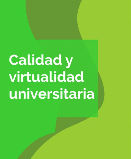 Calidad y virtualidad universitaria