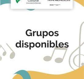 Grupos disponibles en extensión cultural de la UManizales