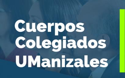 Cuerpos Colegiados UManizales